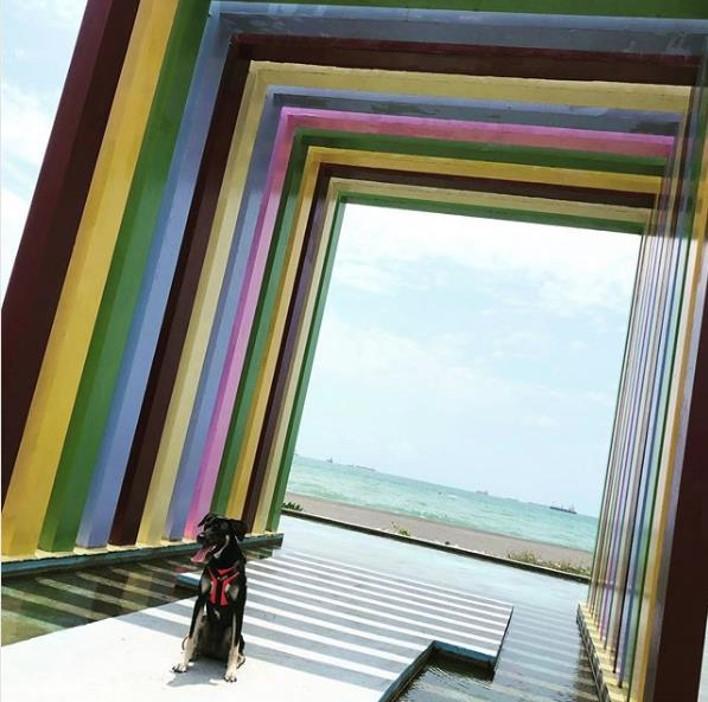Kaohsiung Places Rainbow Church